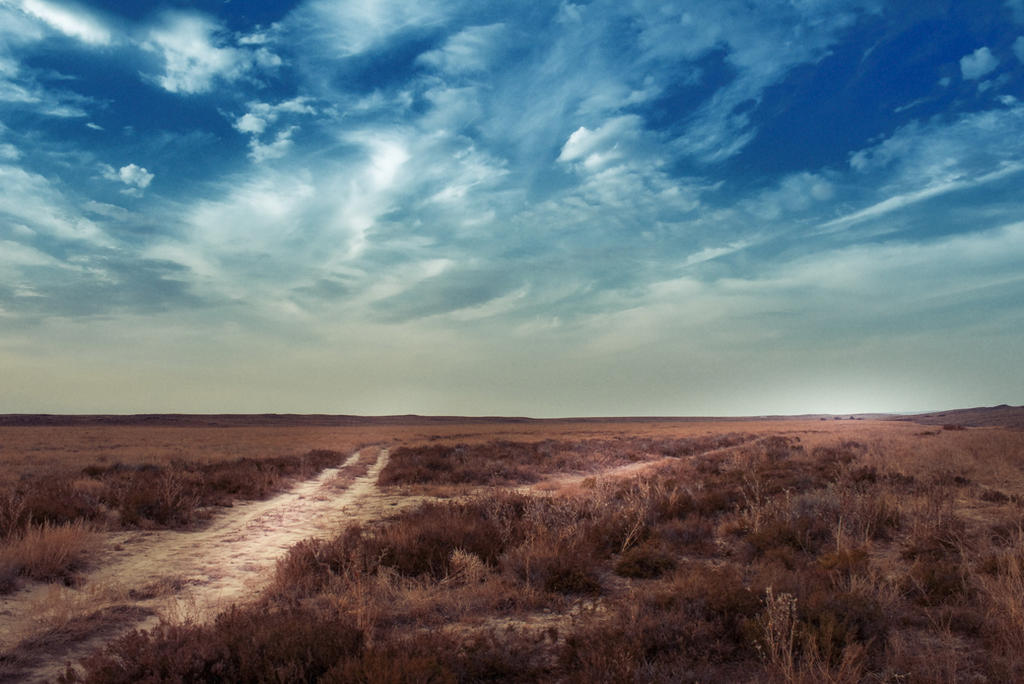 Autumn steppe by ODmitrijS
