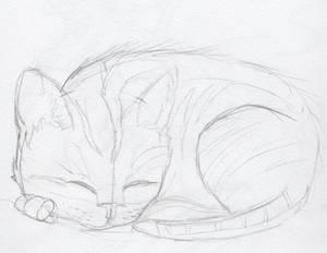 Mia the Kitten