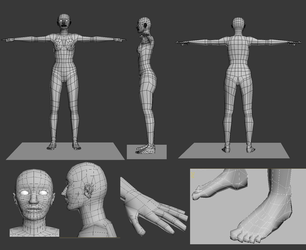 human body wireframe by MrSide