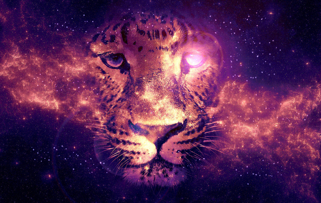tiger nebula by liadn on deviantart