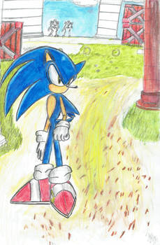 Sonic inspired by the 06 photos