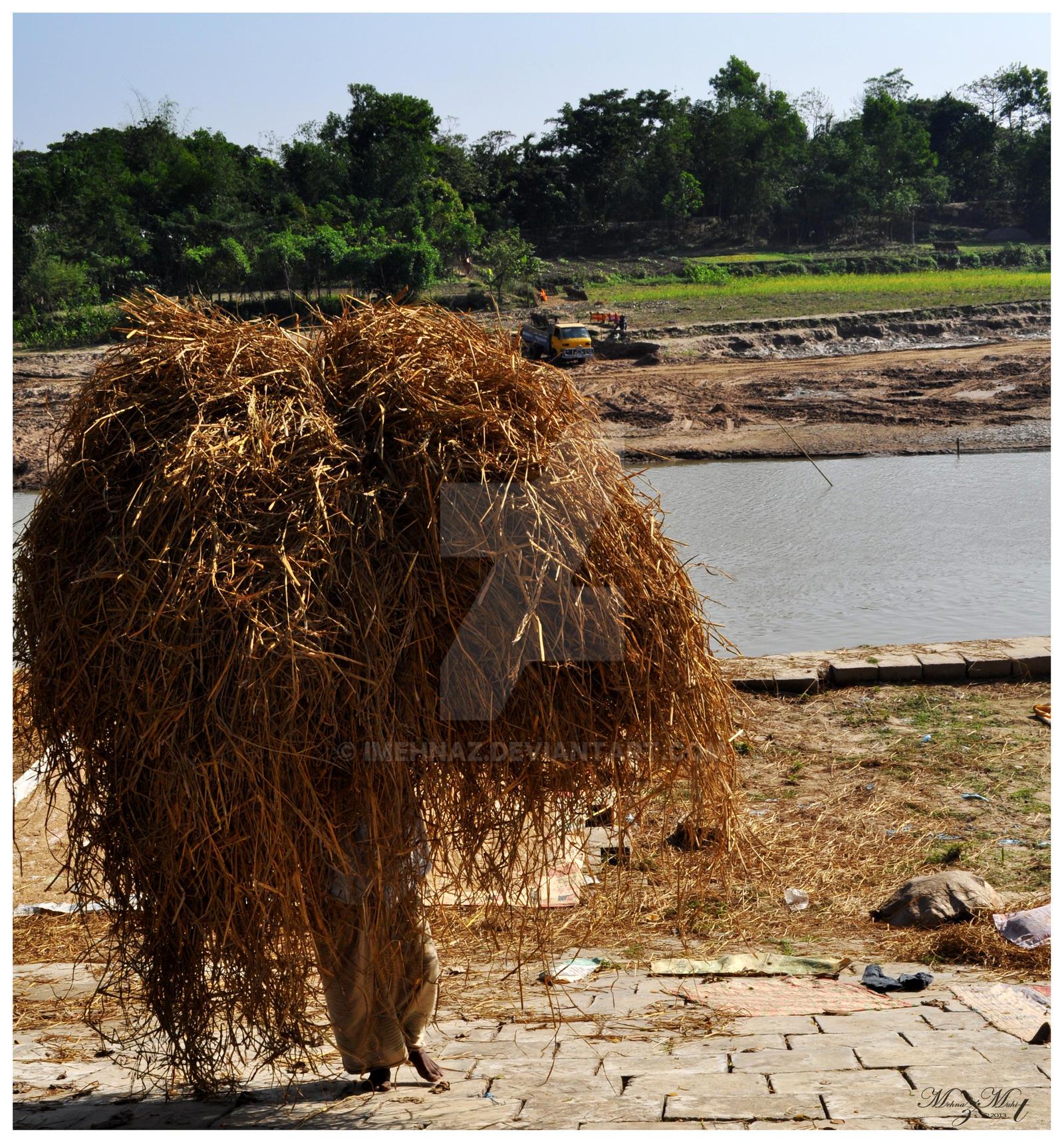 Beautiful Bangladesh [Bangladesh Series] by iMehnaz