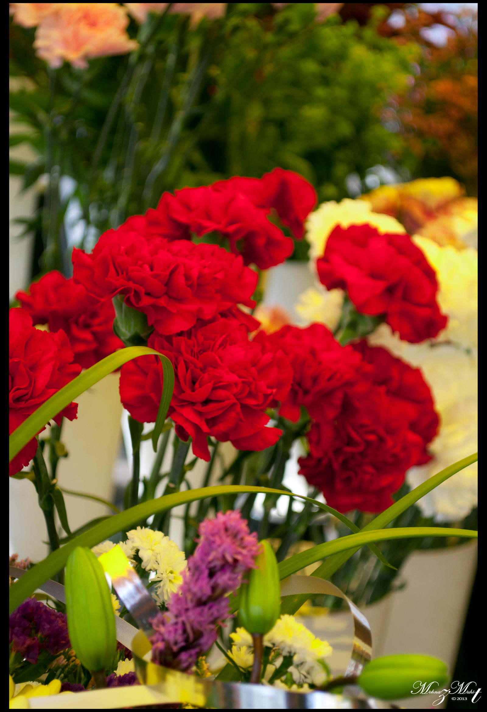 Red Flowers by iMehnaz