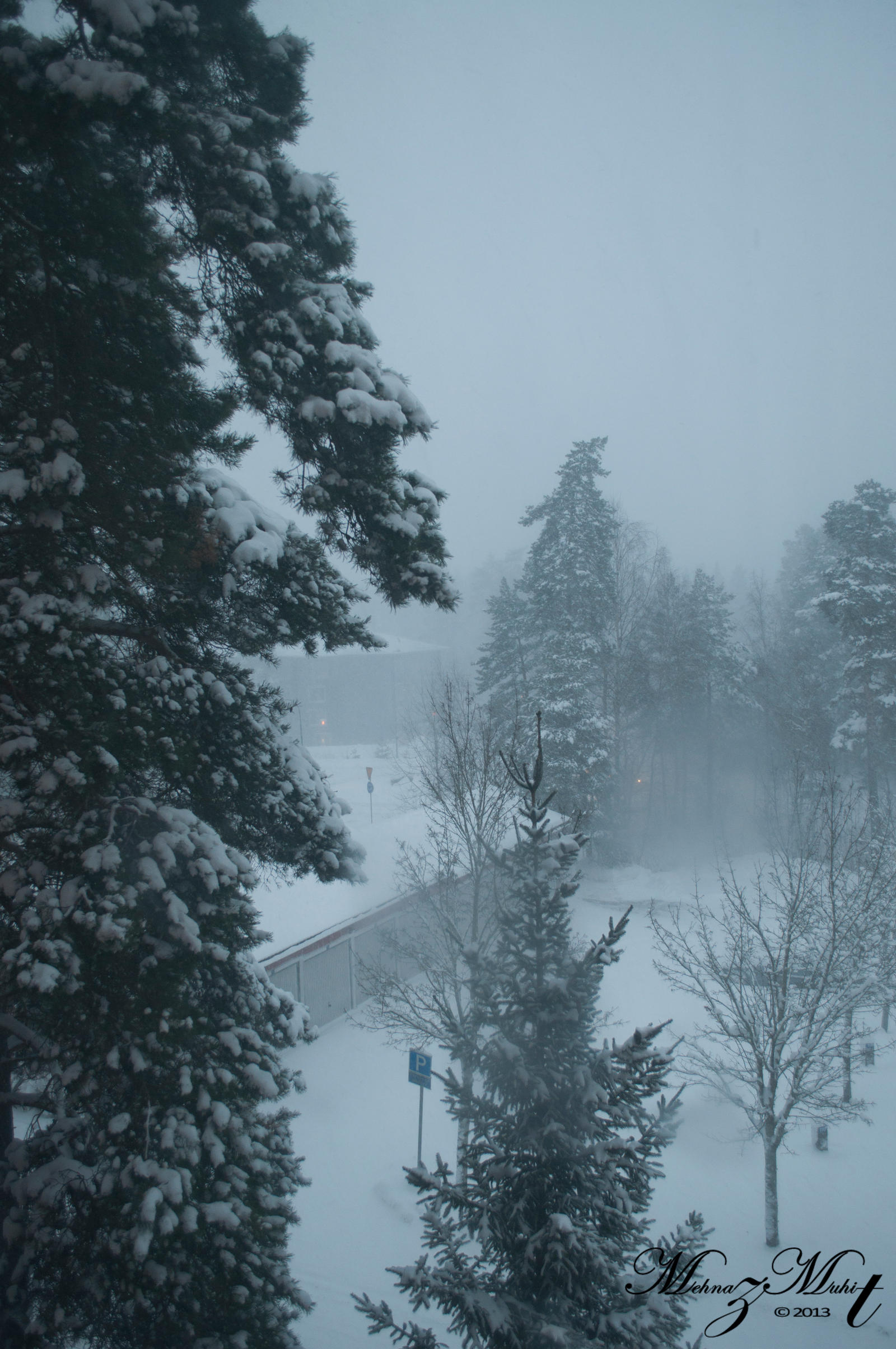 Snowstorm by iMehnaz