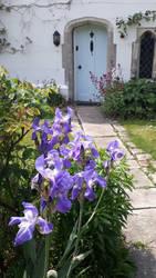 Iris is at the door by paulneptune