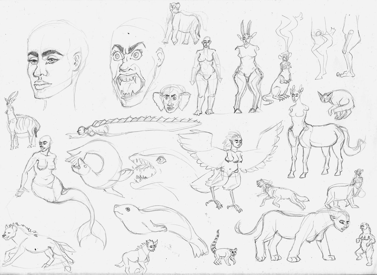 the_witch_character_studies_by_hyaenida_ddrjf8m-fullview.jpg