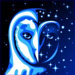 Blue Starry Barn Owl