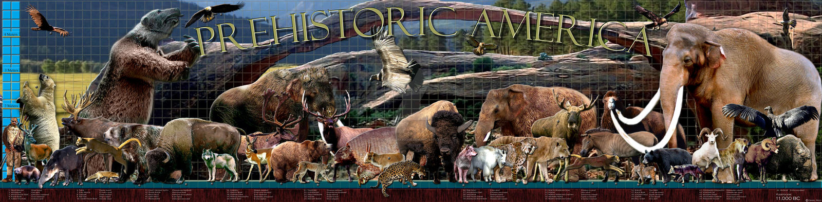 rewilding north america Vol 436 18 august 2005 commentary rewilding north america a plan to restore animals that disappeared 13,000 years ago from north america offers an alternative conservation strategy for the twenty-first century argue josh donlan and colleagues.