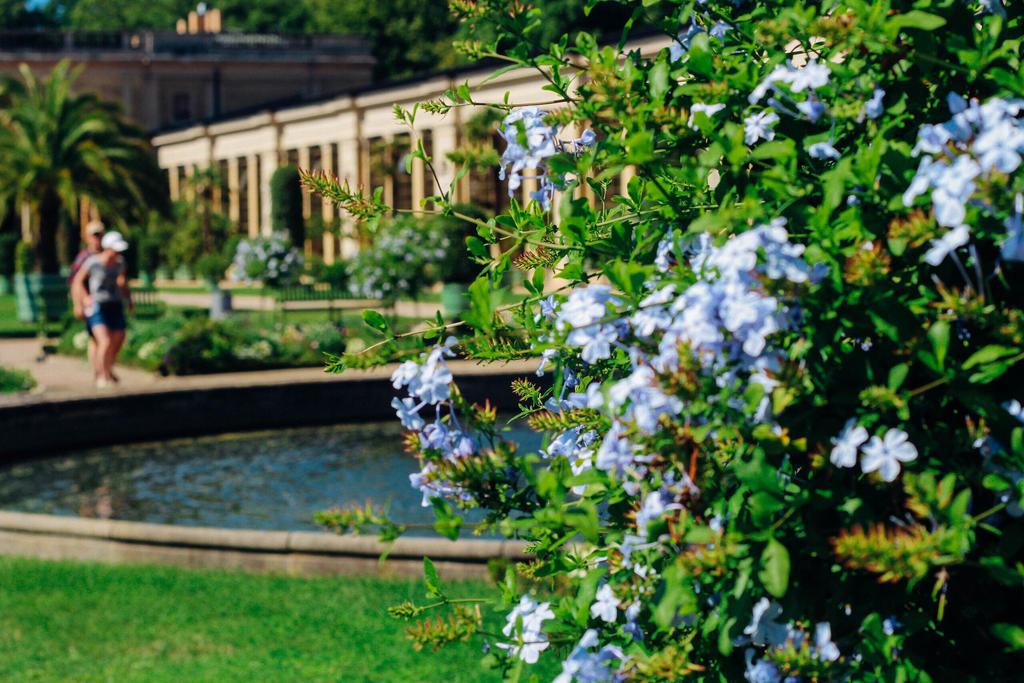 Dvorez  by EvaMoloko