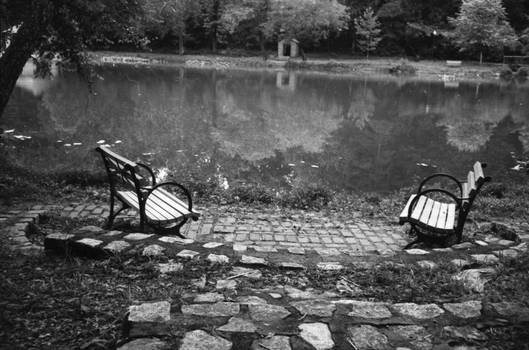 Park Bench On Water's Edge