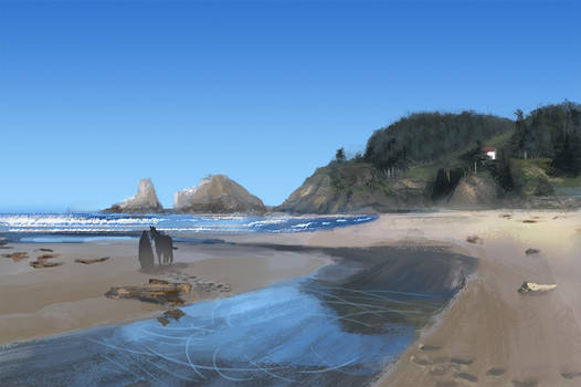 Horse on the beach - Daily practice