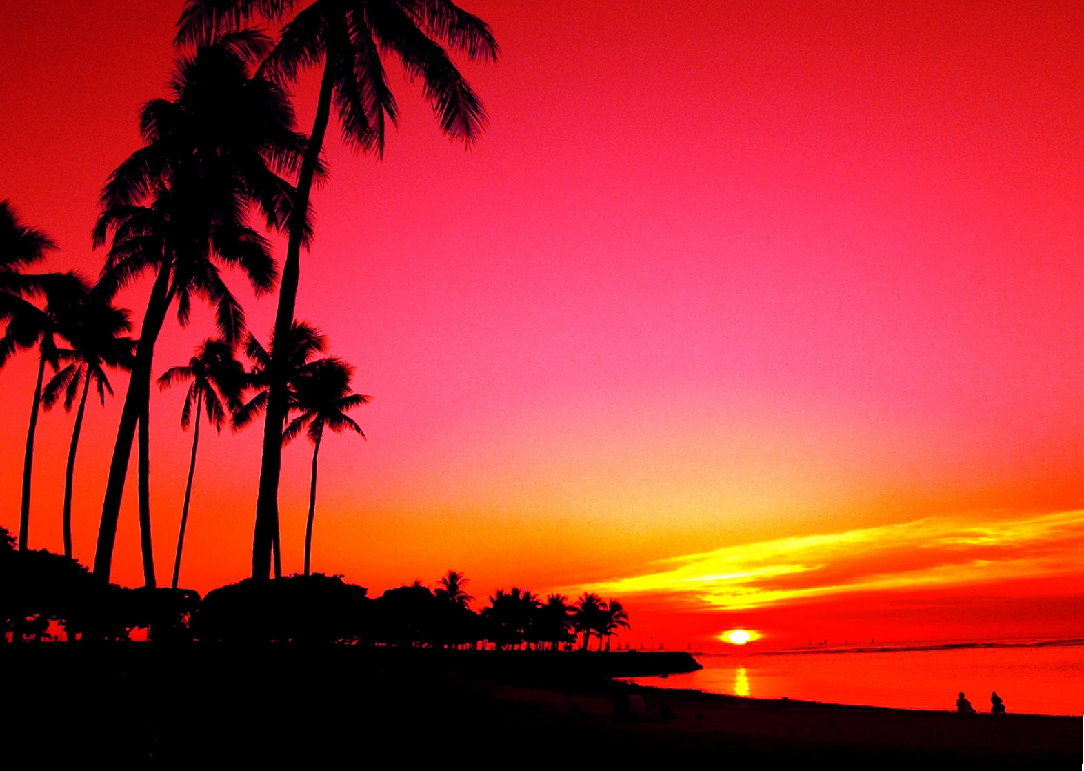 Sunset And Palm Trees Edit 2 By Mellowax