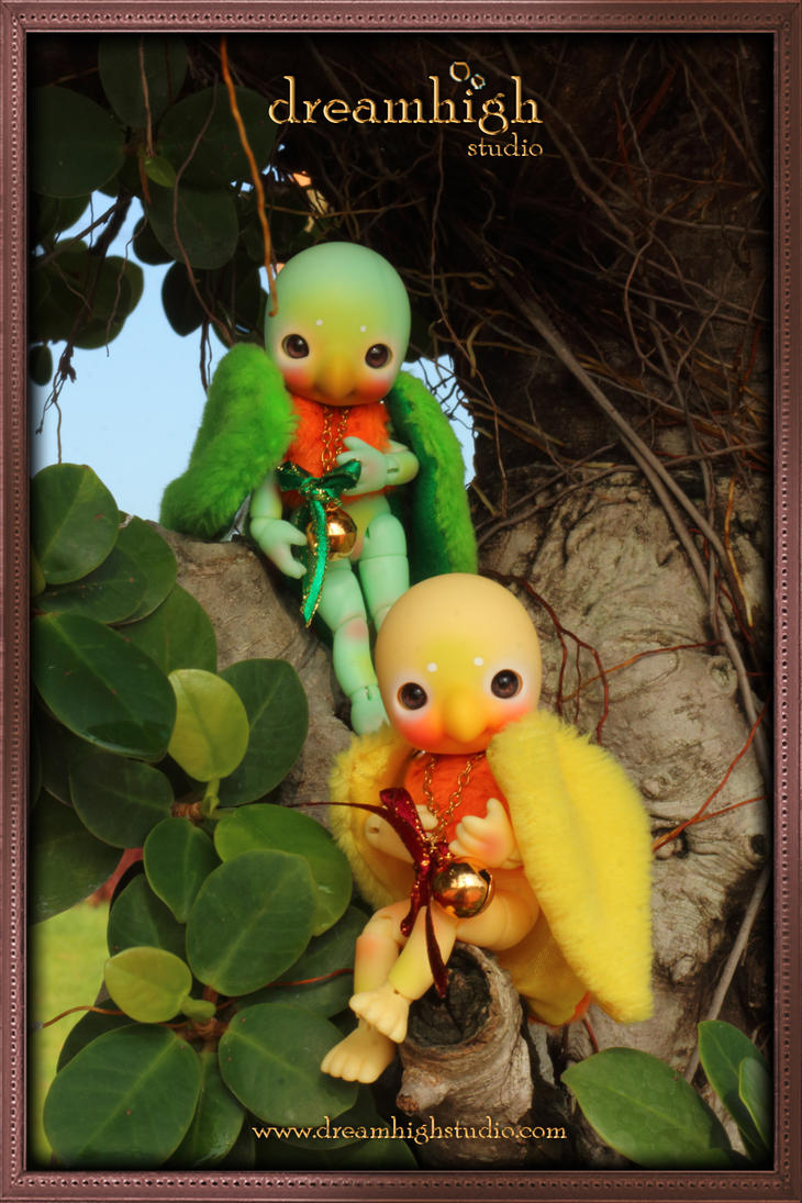 KOI  AI the lovebirds 11 cm BJD  by DreamHighStudio