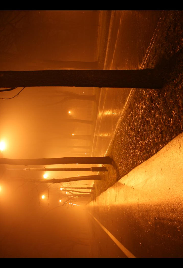 Misty evening by Gudraq