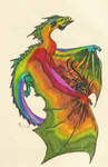Shplee Dragon