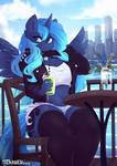 Luna chill
