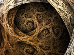 Roots--Big Version--