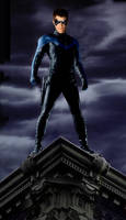 Nightwing by Valor1387
