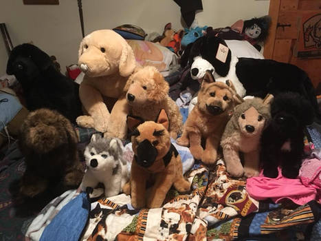 DOUGLAS AND OTHER PLUSH FOR SALE!!!