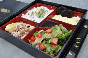 Very Special Bento by Demi-Plum