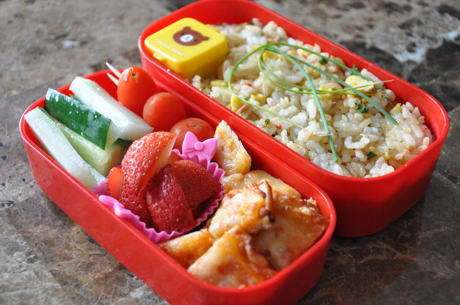 American Take Out Bento by Demi-Plum