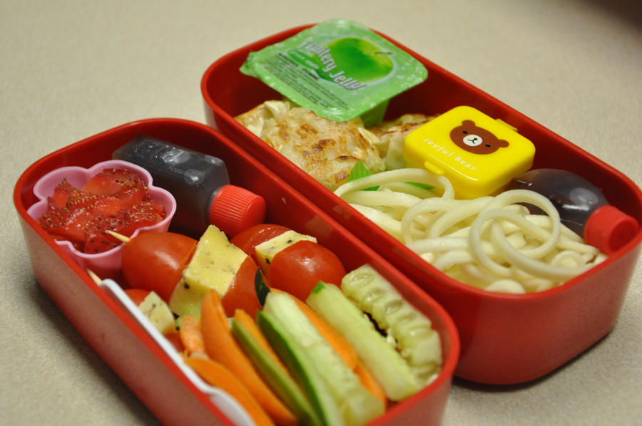 Noodle and Dumpling Bento by Demi-Plum