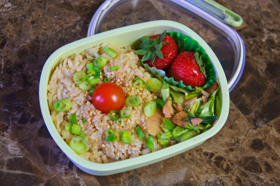 Pork and Ginger Rice Bento by Demi-Plum