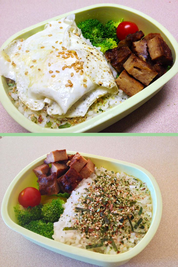 Fried Egg and Teriyaki Chicken Patty Bento by Demi-Plum