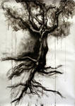Tree in Charcoal and Ink