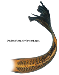 Mermaid Tail 08 (Orange Koi)