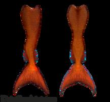Mermaid Tails 09 (Reddish-Orange) by DeviantRoze