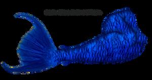 Mermaid Tail 10 (Blue)