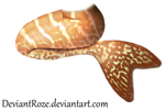 Mermaid Tail 11 (Tiger)