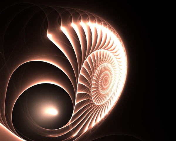 Nautilus Wallpaper By Draconicdreamer