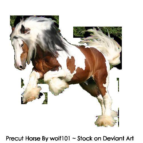 Precut Horse1 by XxXSilver-WolfXxX