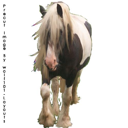 صور احصنه بدون خلفيه png سكرابز حصان png صور احصنه precut_horse2_by_xxxsilver_wolfxxx-d4ggfrk.png