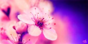 Neon cherry blossoms by OV-art