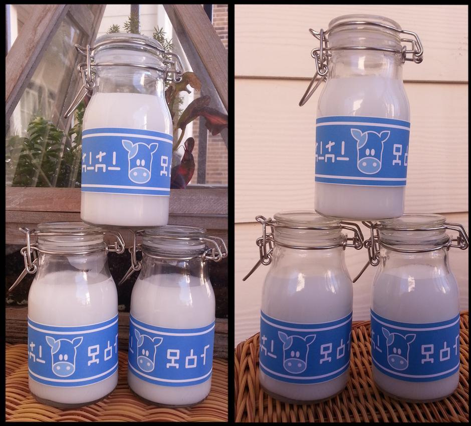 Water Bottle Zelda: Lon Lon Milk By Loafking On DeviantArt