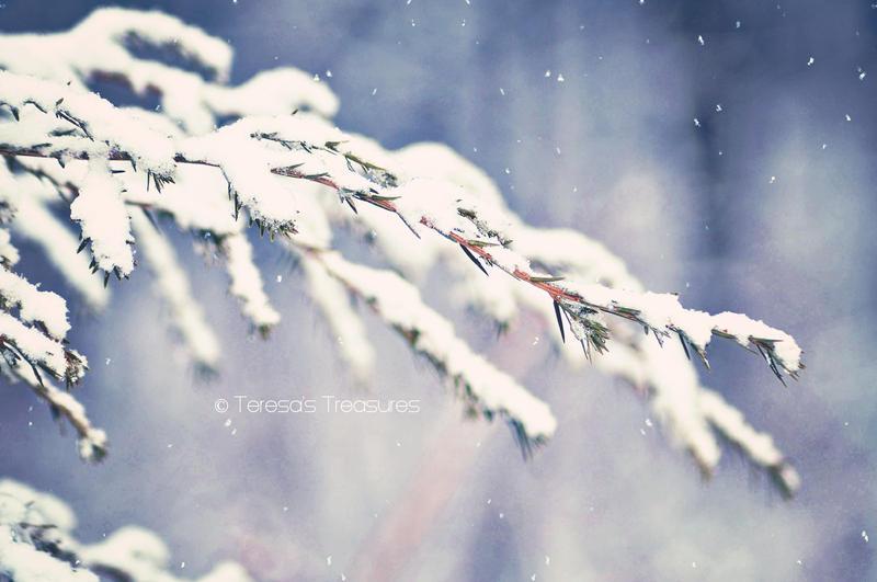 A Winters Dream by teresastreasures72
