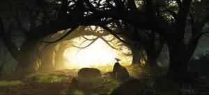 Ancient Forest by ubatuba74