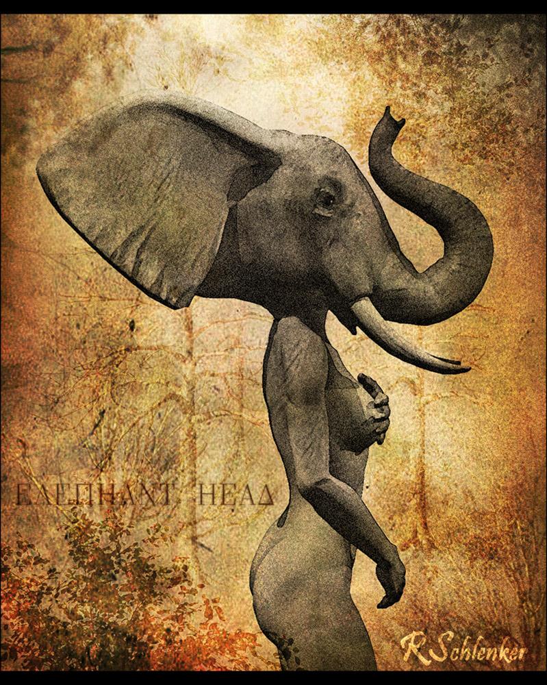 Elephant Head by ubatuba74