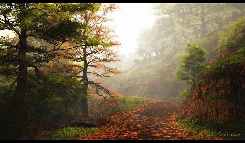 Forest Path by ubatuba74