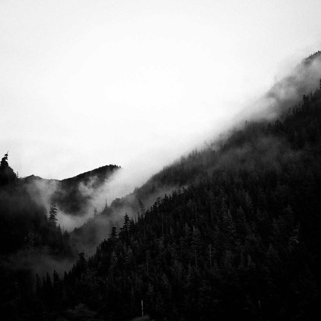 fog of snoqualmie.2 by jonesblachowicz