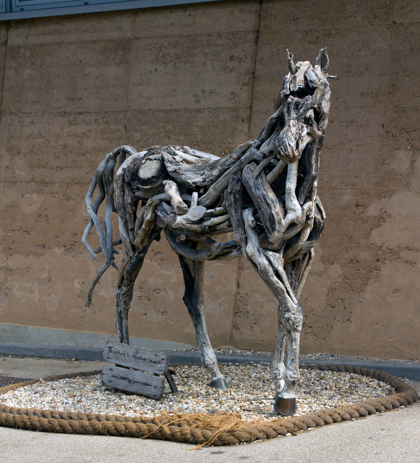 Sculpture At Eden Project By Heather Jansch View 2 By Steve