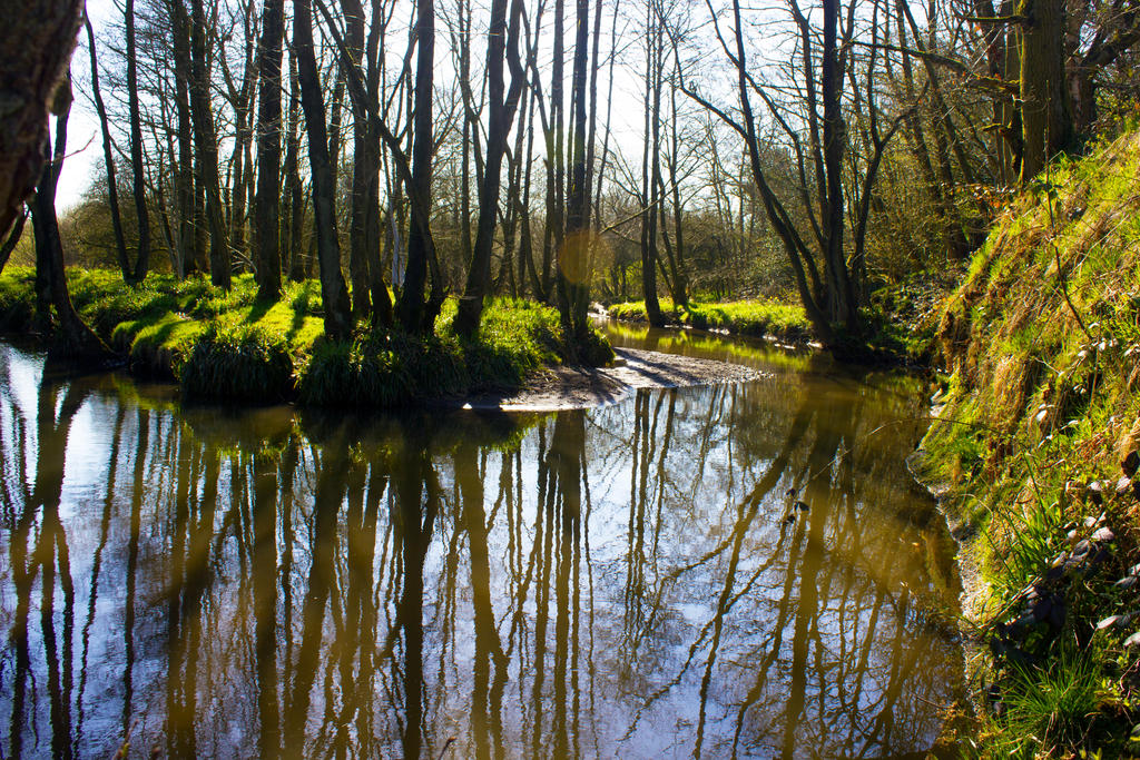 Still waters run deep, reflections on a spring day by Steve-FraserUK