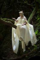 -STOCK- Elven Queen - 2119 by Rabenbuntes