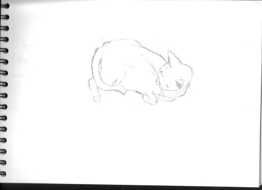 Mes dessins <3. - Page 2 Comics_test_by_visu_kei-d5msha8