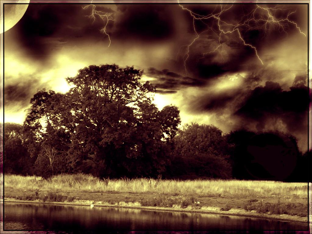 Beautiful Chaos by WolfPrincess33