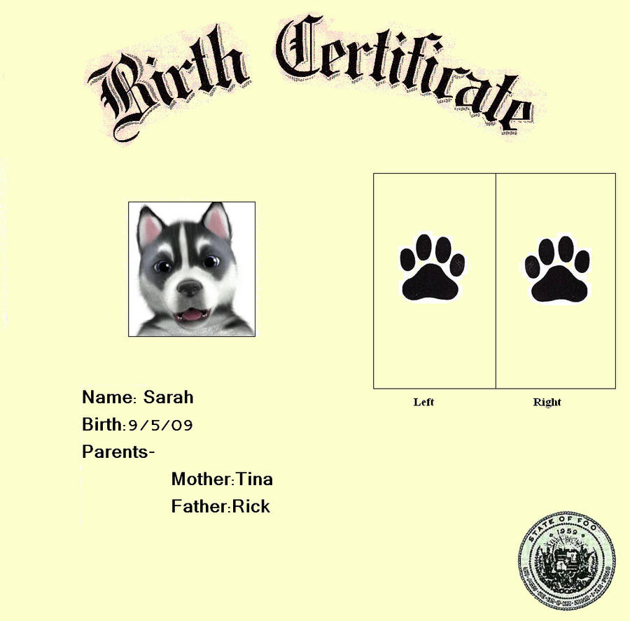dog show certificate template - foopets birth certificate by deathnoteowner13 on deviantart
