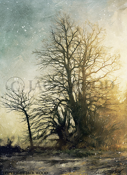 Winter Trees by Jack-Wood